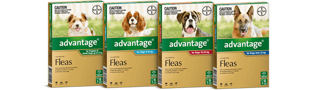 Advocate Flea Heartworm Amp Worm Treatment For Dogs