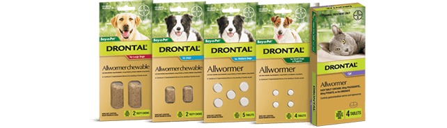 drontal all