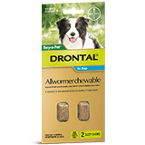 Drontal Allwormer Chewable for Medium Dogs 3-10 kg