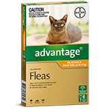 Advantage for Kittens and Small Cats up to 4 kg