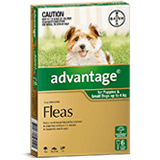 Advantage for Puppies and Small Dogs up to 4 kg