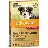 Advocate for Dogs 10-25 kg