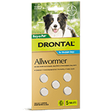 Drontal Allwormer Tablet for Medium Dogs 3-10 kg