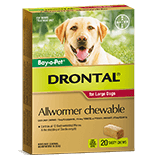 Drontal Allwormer Chewable for Large Dogs 10-35 kg
