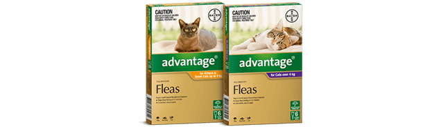 Advantage For Cats Kittens Fast Acting Flea Prevention Treatment
