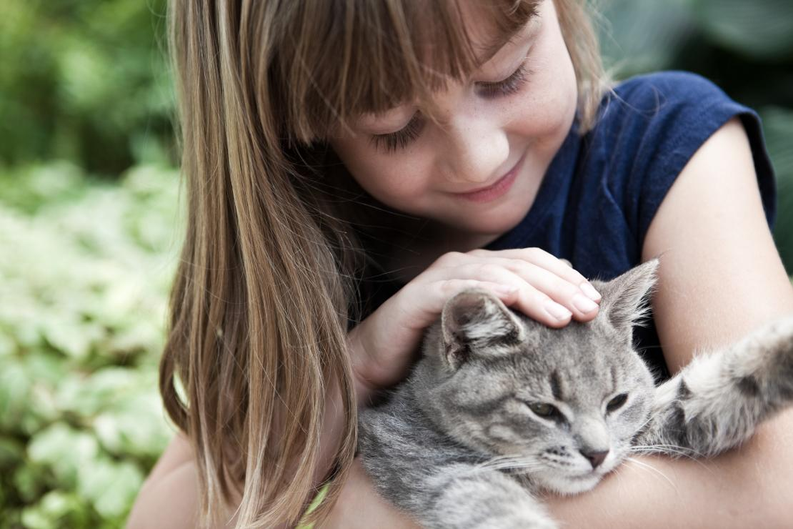 Pet & baby: communication, training and preparation tips