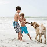 Two young boys playing with a lab on the beach
